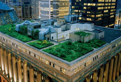 green-building_feat